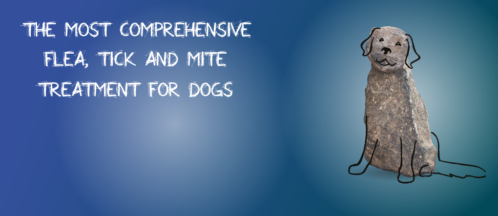 Simparica Flea Tick and Mites protection