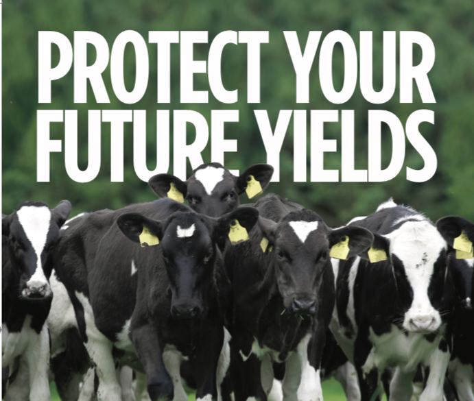 Protect your future yields