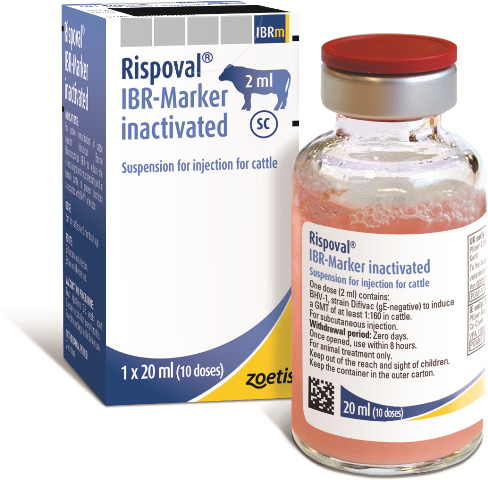 Rispoval IBR Market Inactivated