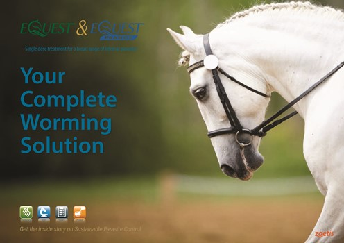 Contact Ireland@zoetis.com for your free information guide on Horse Worms and Control